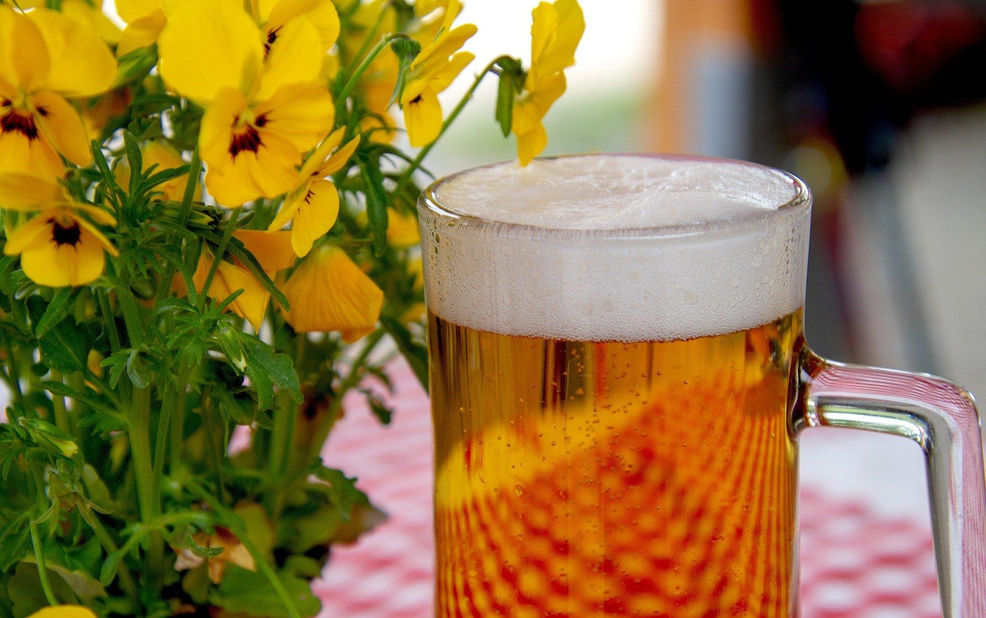 Party Bier